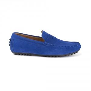 BASIL blue