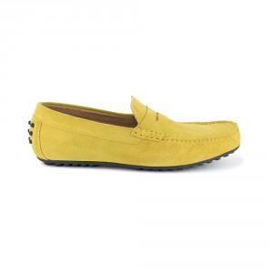 BASIL yellow